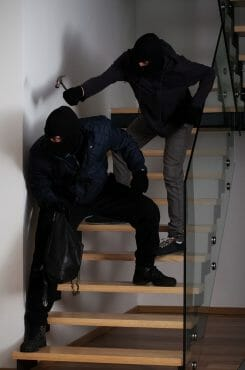 Burglars Break into a Home